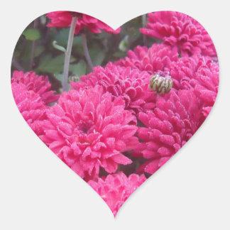 Flowers-001.JPG Autocollant En Cœur