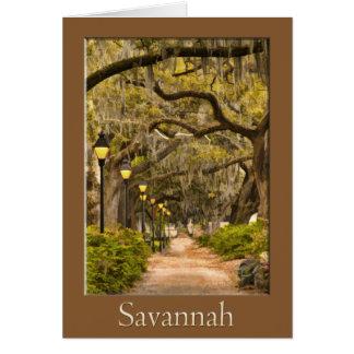 Forsyth Park - Savanne, GA Karte