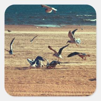 Foto des Coney-Insel-Strandes w/Seagulls Quadrat-Aufkleber