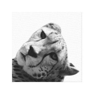 Foto des wilden Tieres Leopard Cheetah Leinwanddruck