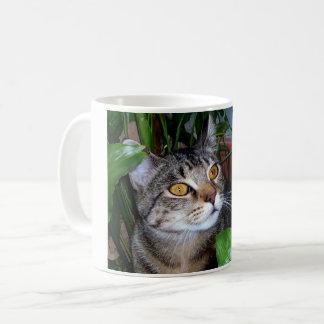 Foto Ihre Haustier-Katzen-Kaffee-Tasse Kaffeetasse