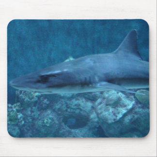 Fotografie einer Haifisch-Mausunterlage Mauspad