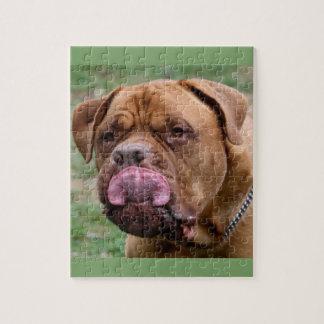 Fotopuzzlespiel Dogue de Bordeaux 8x10