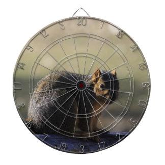Fox-Schwanz-Eichhörnchen PFEIL-BRETT Dartscheibe