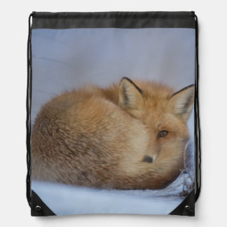 Fox-Tasche, foxy Käufer, Tasche, Handtasche, wild Turnbeutel