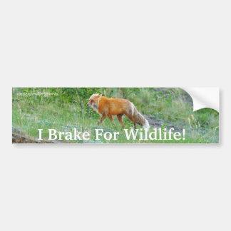 Fox-Tier-Schutz-Autoaufkleber Autoaufkleber