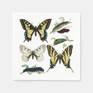 Frack-Schmetterlinge, Raupen und Motte Serviette