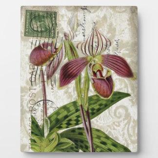 französische botanische Kunst-Shabby Fotoplatte