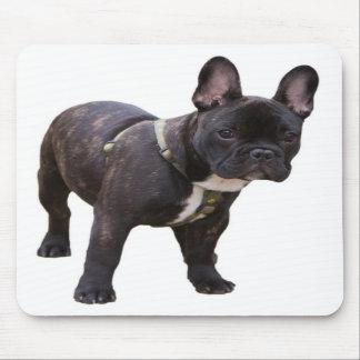 Französische Bulldogge mousepad Geschenkidee