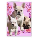 Französische Bulldogge Trio Grußkarten