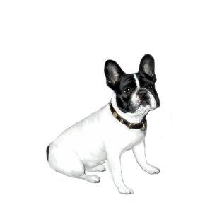 Französische Bulldogge Geschenke Zazzlech