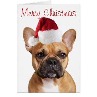 Französische Bulldoggen-Weihnachtskarte Karte