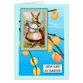 Frau Rabbit und ein riesiges Ei Karte