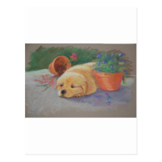 Frecher Labradorwelpe Postkarte