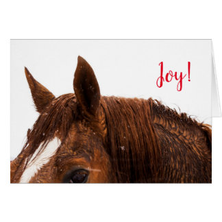 Freude-PferdeFoto-Feiertags-Weihnachtsgruß-Karte Karte