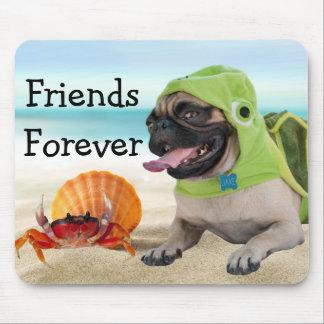 Freunde für immer: Krabbe + Schildkröte-Mops Mousepad