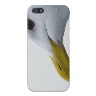 Freundliche Seemöwe? iPhone 5 Cover
