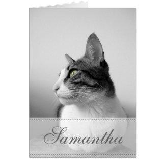 Friedliche Katze Karte