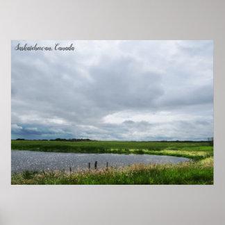 Friedliches Kanadier-Grasland der Natur-| Poster