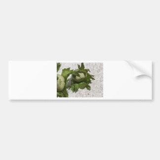 Frische grüne Haselnüsse auf dem Boden Autoaufkleber