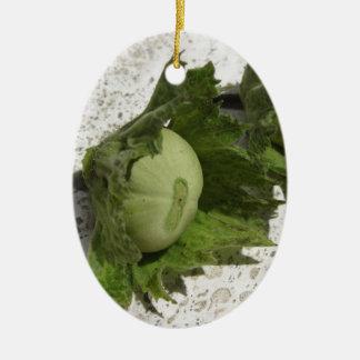Frische grüne Haselnüsse auf dem Boden Keramik Ornament