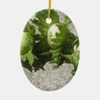 Frische grüne Haselnüsse auf dem Boden Ovales Keramik Ornament