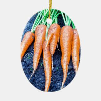 Frische Karotten, die auf schwarzem soil.JPG Keramik Ornament