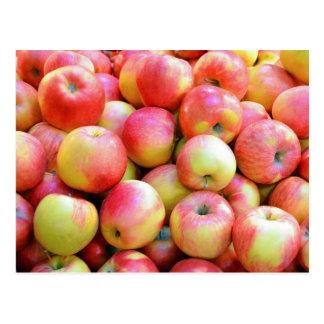 Frische rote und gelbe Äpfel Postkarte