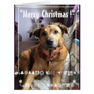 """Frohe Weihnacht-Karte """"Stella"""" Karte"""