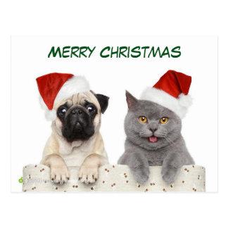 Frohe Weihnacht-Mops Hund und Kittten Postkarte