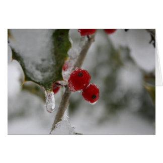 Frohe Weihnachten: Gefrorene Stechpalmen-Beeren Karte