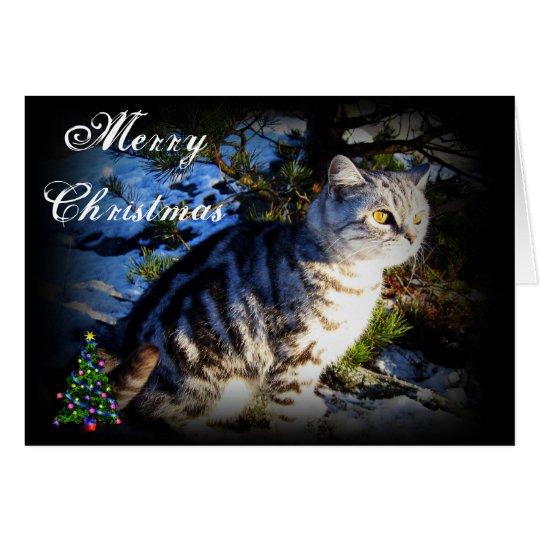 Frohe Weihnachten - Katzengrußkarte Karte