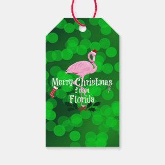 Frohe Weihnachten von Florida, Sankt-Flamingo Geschenkanhänger