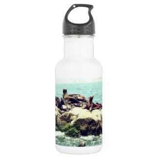 Frohes Siegel auf einer Mexiko-Strand-Anlegestelle Trinkflaschen