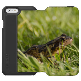 Frosch Incipio Watson™ iPhone 6 Geldbörsen Hülle