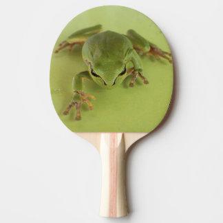 Frosch-Klingeln pong Paddel Tischtennis Schläger