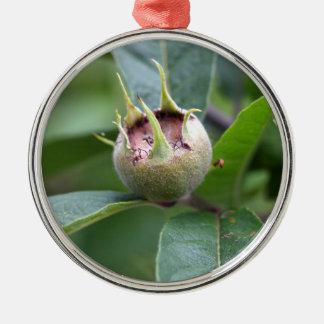 Frucht der allgemeinen Mispel Rundes Silberfarbenes Ornament
