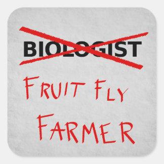 Frucht-Fliegen-Bauers-Aufkleber Quadratischer Aufkleber