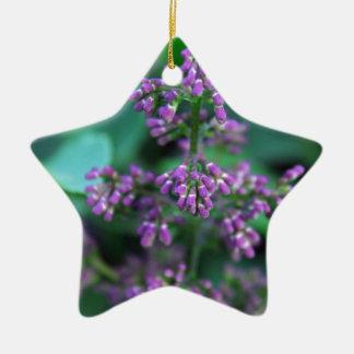 Früher Morgen-Fliedern Keramik Stern-Ornament