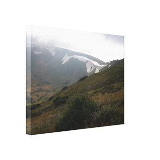 Frühjahr in den Rockies Leinwanddruck