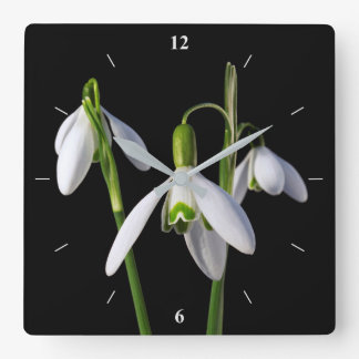 Frühling entspringt ewig quadratische wanduhr