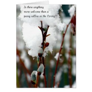 Frühling! Grußkarte
