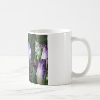 Frühling ist hier! kaffeetasse