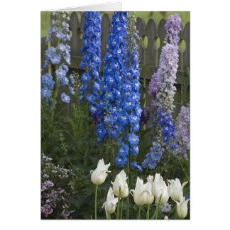 Frühlings-Blumen entlang einem Gartenweg, Georgia Karte