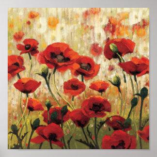 Frühlings-Blumen in einem Garten Poster