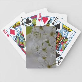Frühlings-Blüten Bicycle Spielkarten