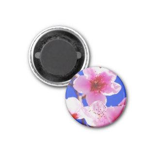 Frühlings-Blüten Runder Magnet 2,5 Cm