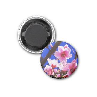 Frühlings-Blüten Runder Magnet 3,2 Cm