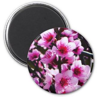 Frühlings-Blüten Runder Magnet 5,1 Cm