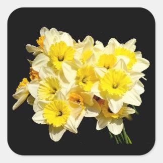 Frühlings-gelbe Narzissen-Aufkleber Quadratischer Aufkleber